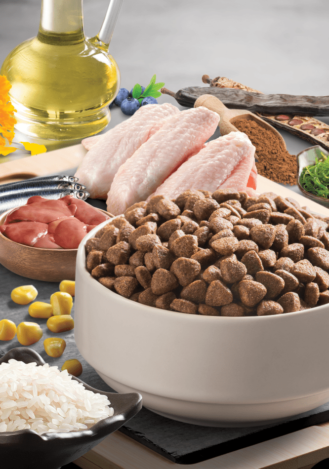 Bonacibo Puppy Ingredients